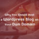 Why Should You Host a WordPress Blog on Your Own Domain?